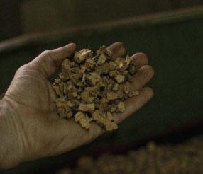 produzione pannello di corkpan - riduzione a granulo