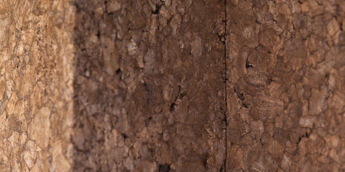 dettaglio della posa del pannello di sughero Corkpan per cappotto termico a vista