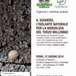 locandina_roma_20141-150x150.jpg