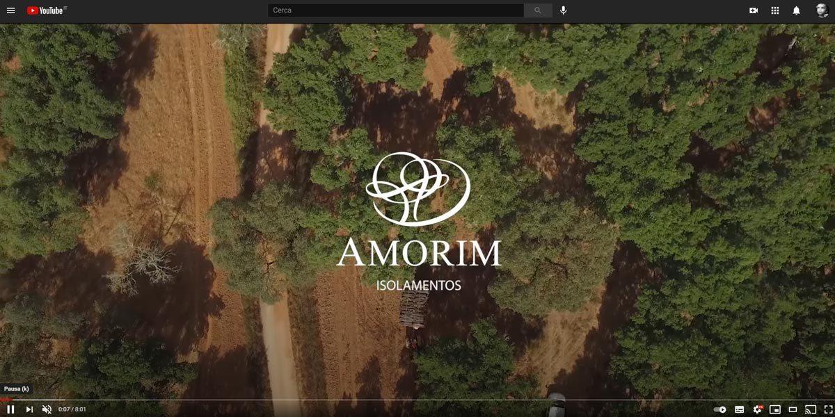 La filiera e la storia del sughero raccontate da Amorim in questo video