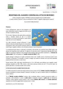 Disponibile l'approfondimento dedicato al comportaemnto microbico del sughero espanso CORKPAN