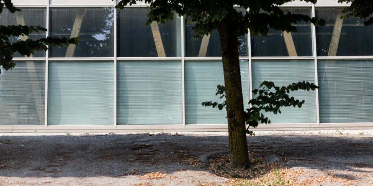 Vislab-Parma-16-1200x600.jpg