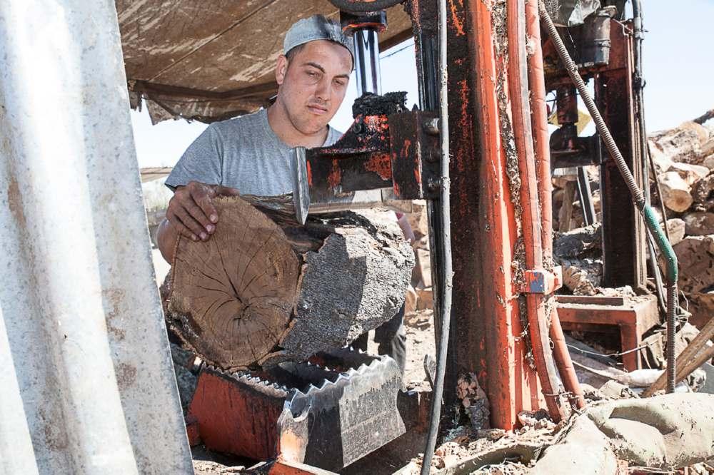 La corteccia di sughero necessaria per realizzare il pannello Corkpan è ottenuta dalle potature delle querce