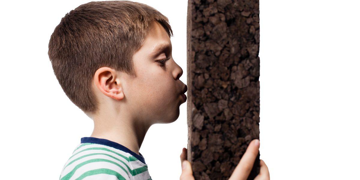 La salubrità del sughero CORKPAN è validata da Biosafe per l'isolamento di edifici in interno e esterno