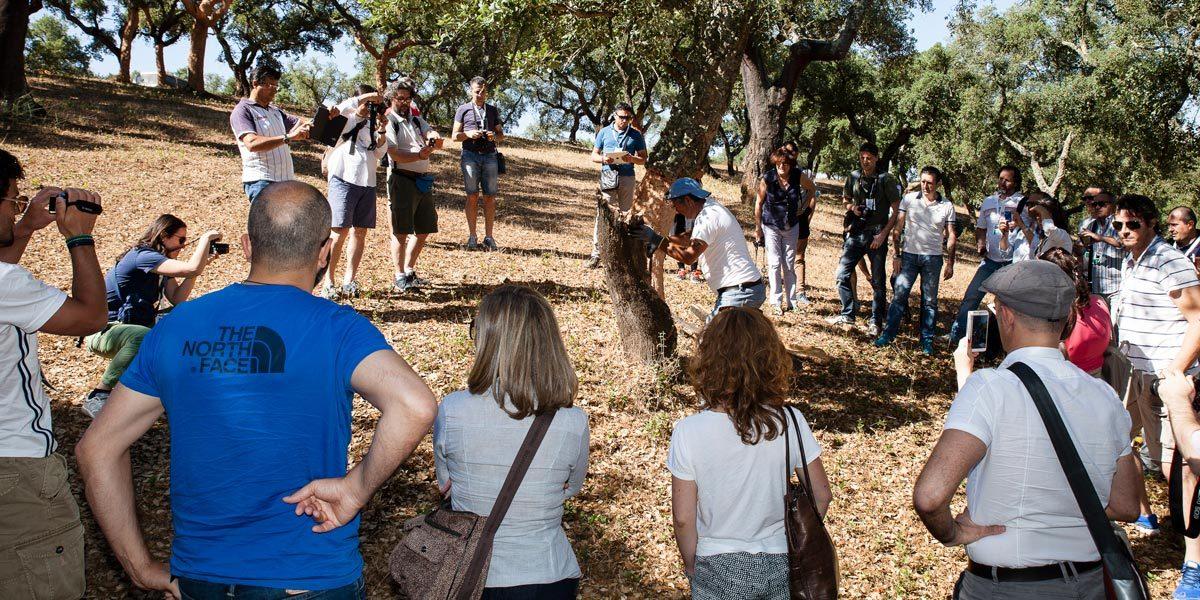 Viaggio formativo in Portogallo con Tecnosugheri, alla scoperta del sughero Amorim